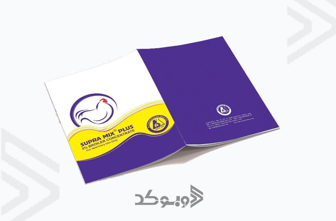طراحی بروشور شرکت پیشتاز 3