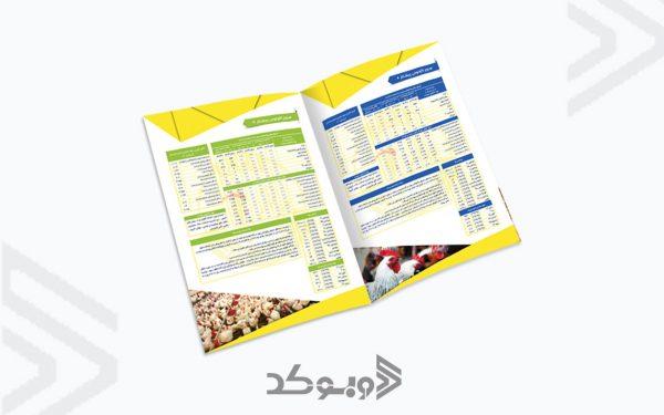 طراحی بروشور شرکت پیشتاز 2